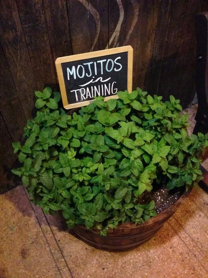 Mint garden sign, i love this