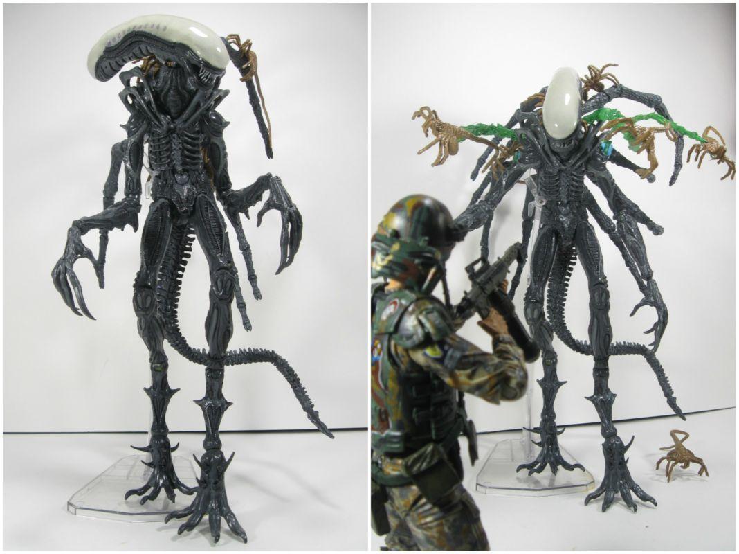 Carrier Alien (AVP Extinction) (Alien vs Predator) Custom Action ...
