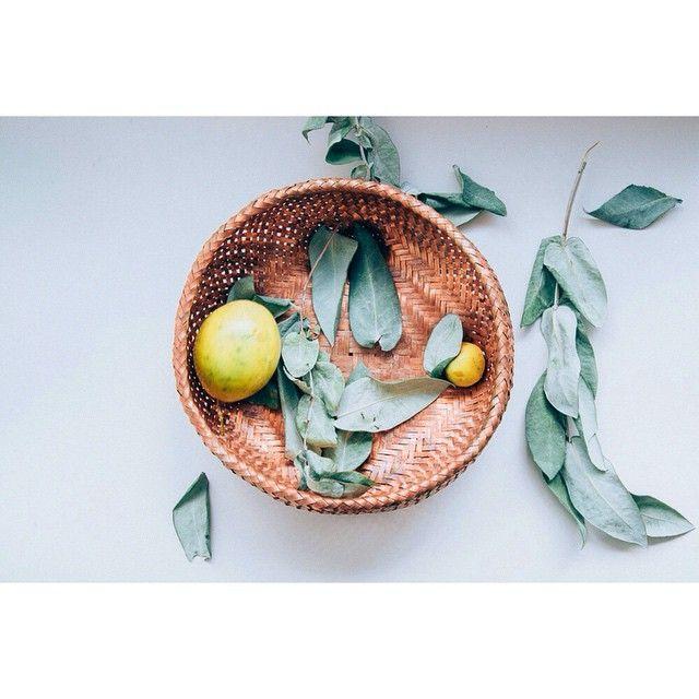 copper woven basket svia spacioterreno