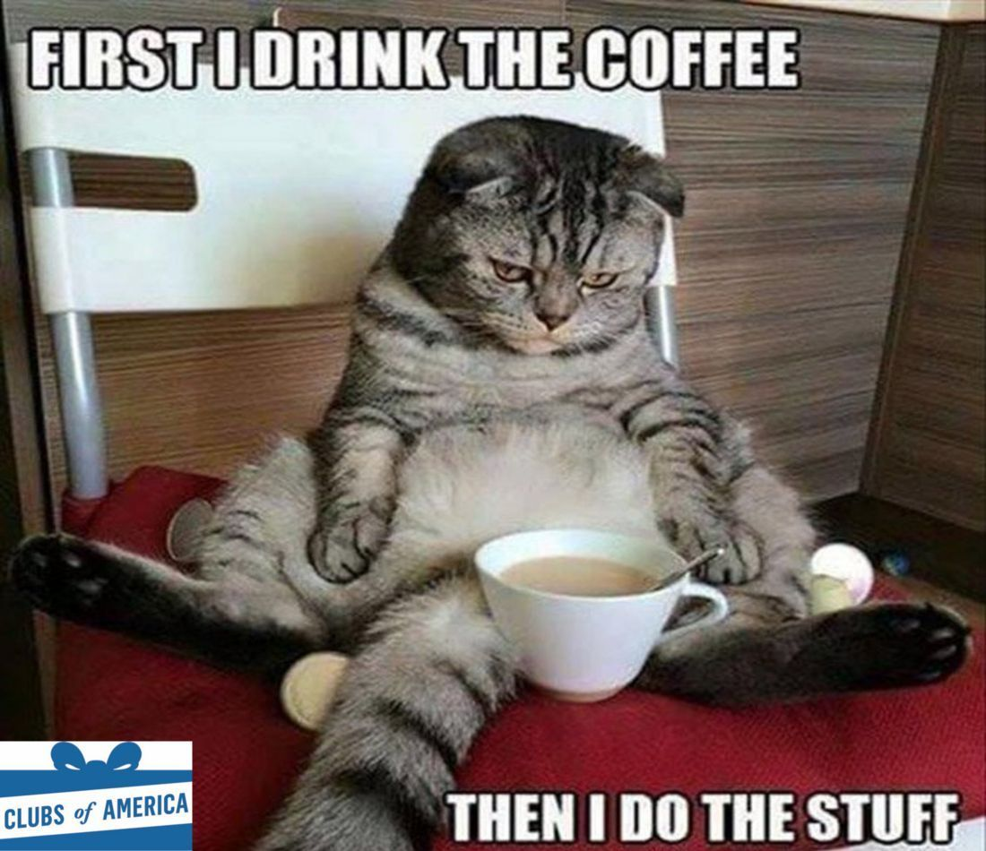 The coffee always comes before the doing stuff. #coffeeofthemonth ❤☕ | Funny good morning memes, Funny animal pictures, Morning memes