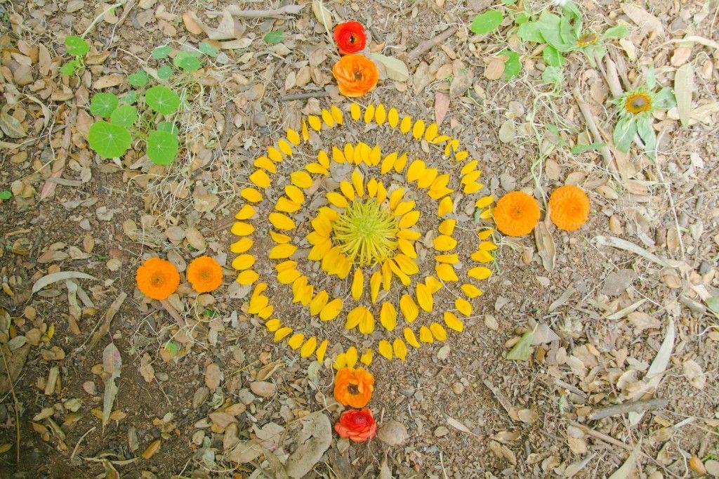 Flower Petal Arrangement