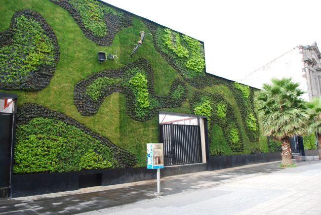 Green Wall with bikes at the Universidad del Claustro de Sor Juana, Mexico City.