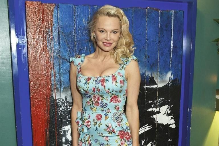 Image result for Pamela Anderson lifestyle
