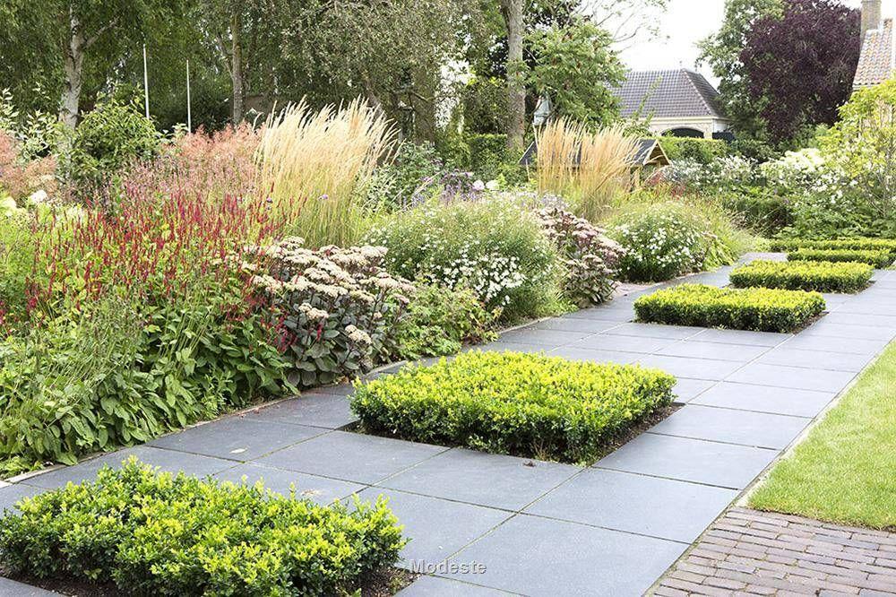 Pin de M.M.STUDIO en ogród | Pinterest | Jardines