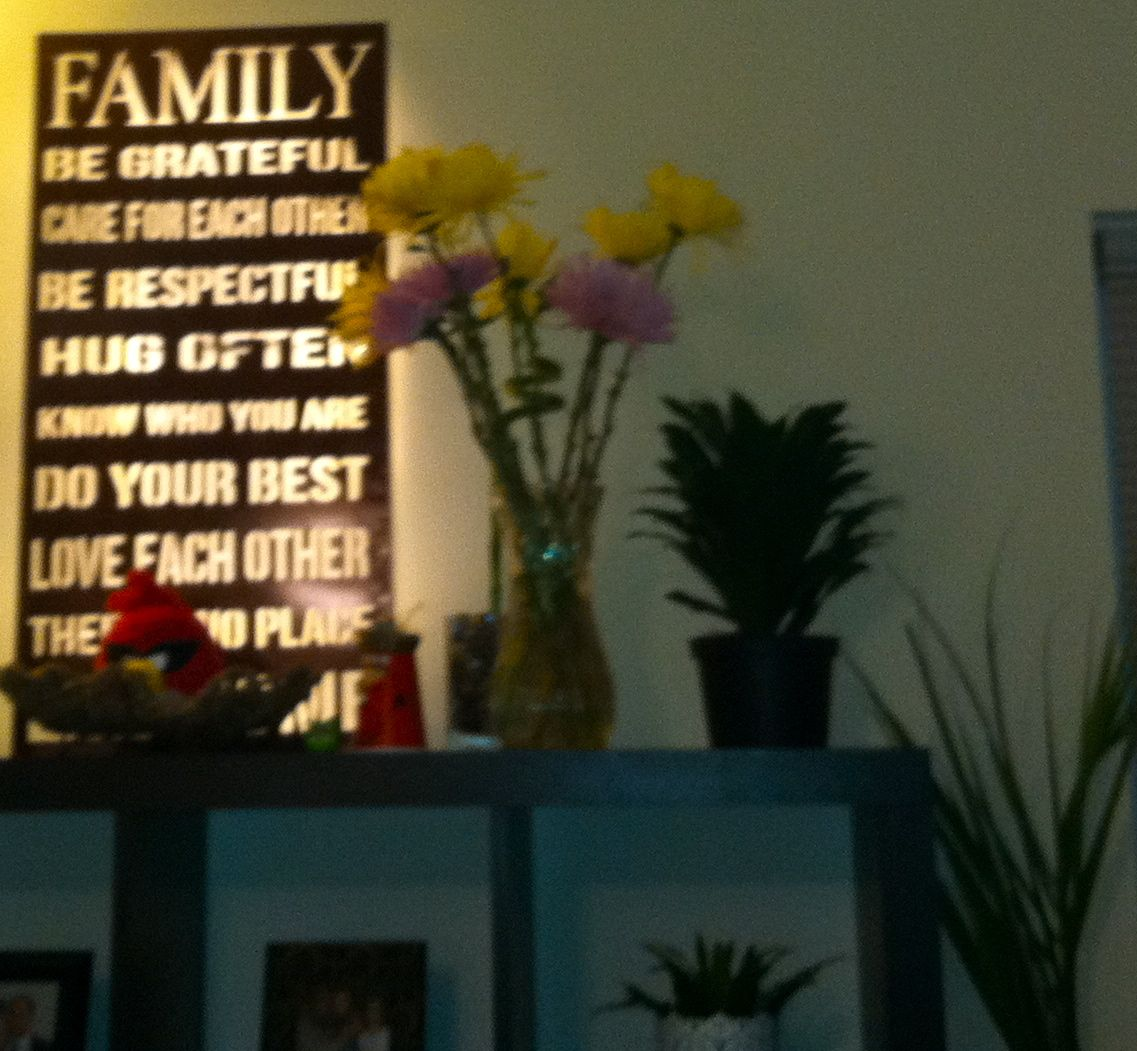 A family poem back lit with a lighting kit from Ikea.