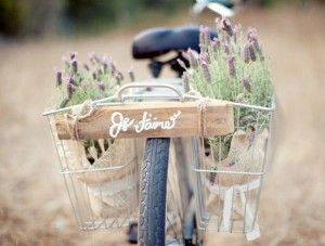 love bike messages!