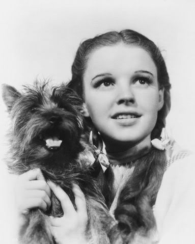 """Judy Garland as Dorothy in """"The Wizard of Oz""""...."""