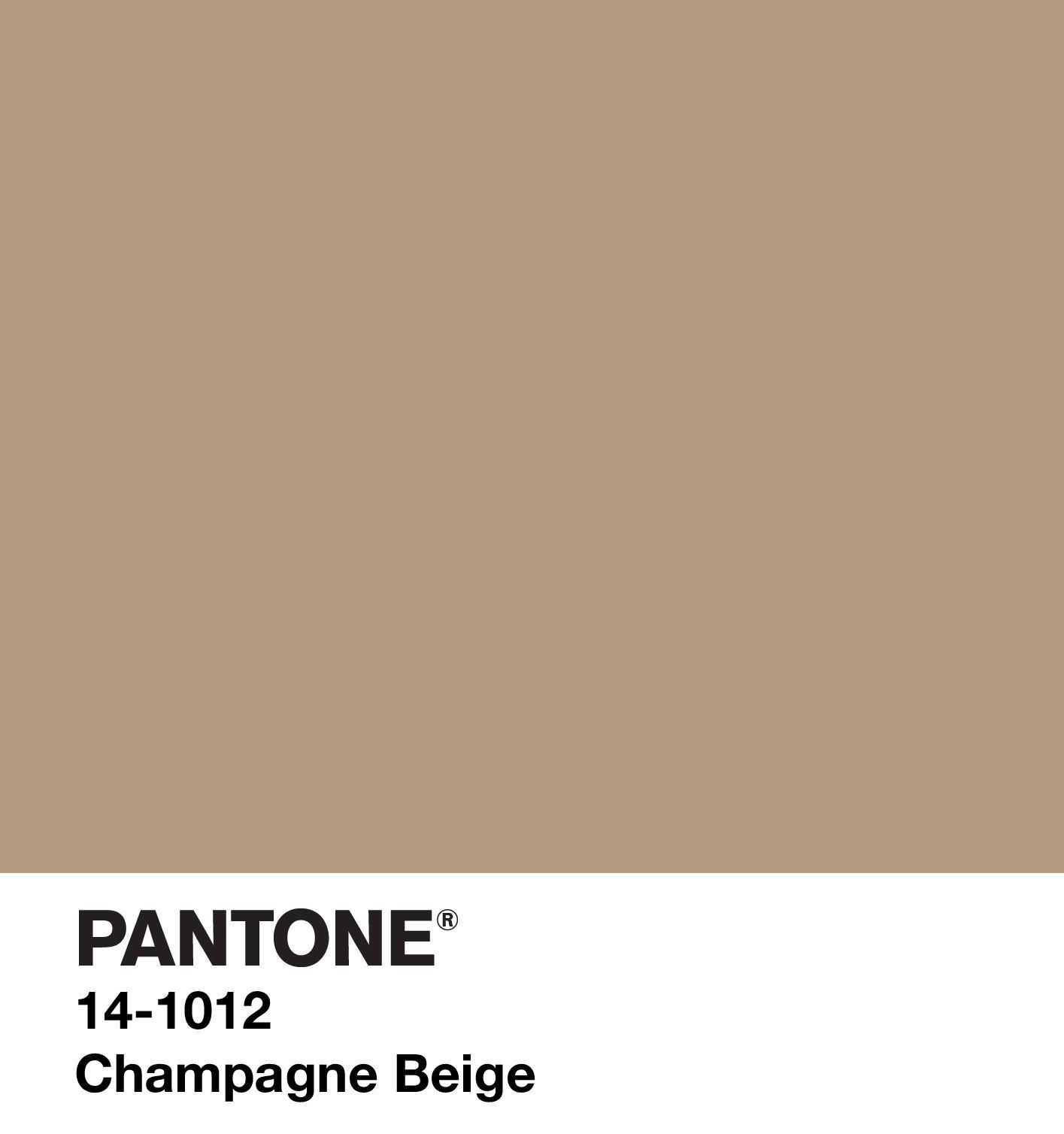 Champagne beige marrons e beges pinterest pantone for Brown beige paint color