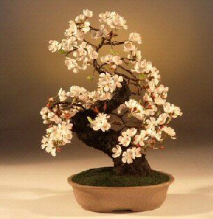 Artificial Cherry Blossom Large Japanese Bonsai Tree Bonsai Tree Bonsai