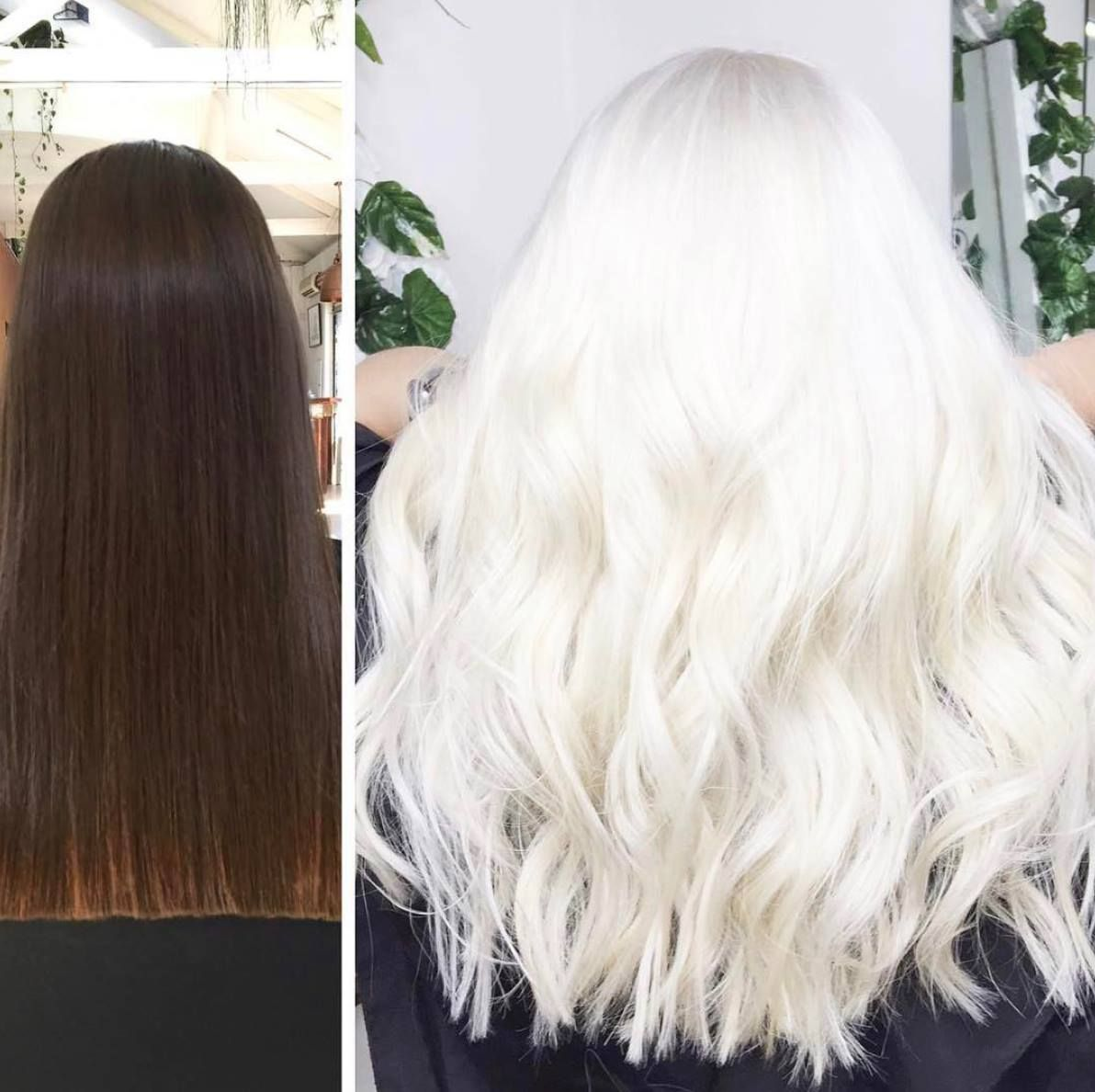 Who wants the formula!? STUNNING transformative color by A Loft Story Salon in Australia with Olaplex.