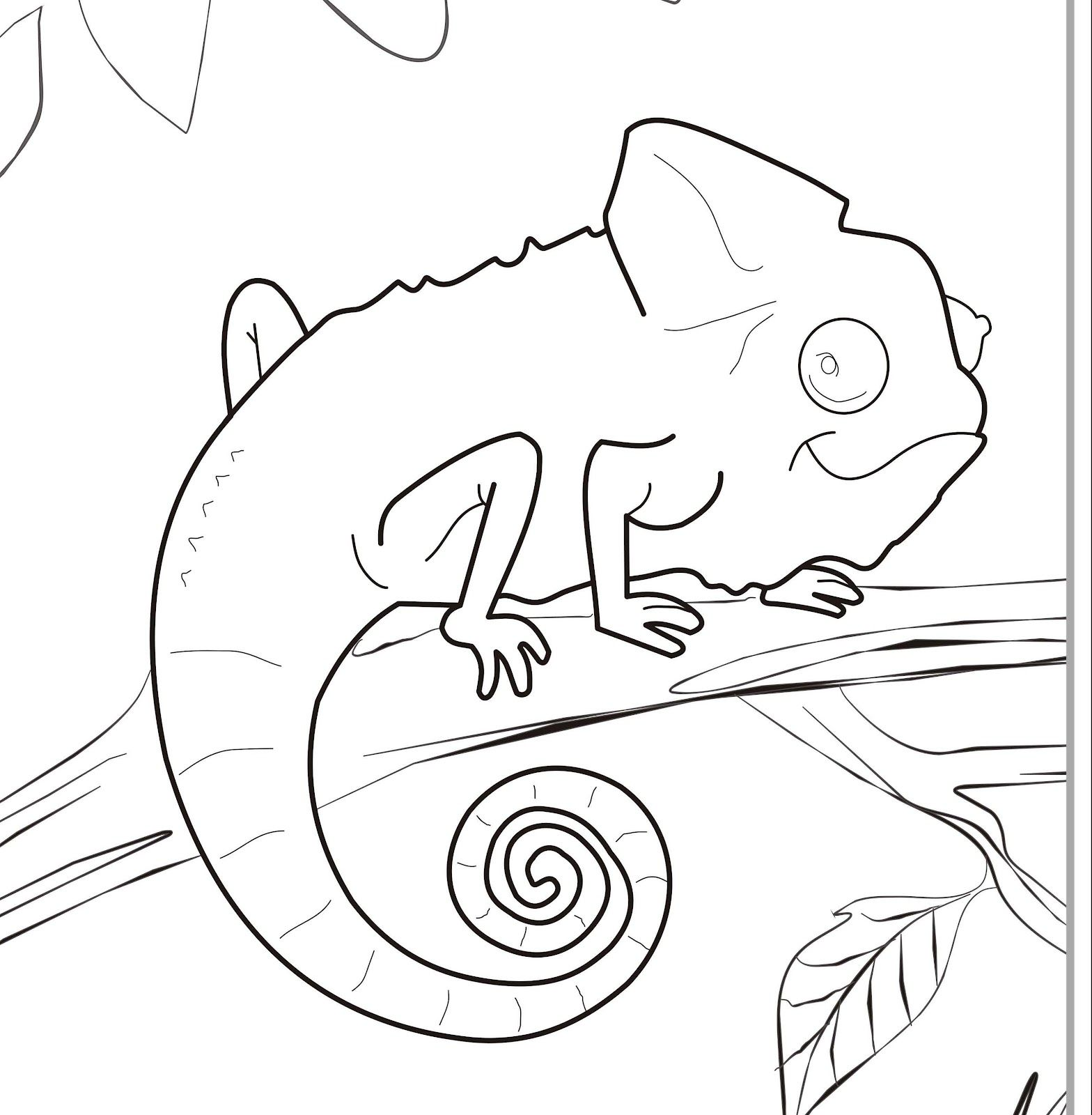 Download or print this amazing coloring page: Chameleon ...