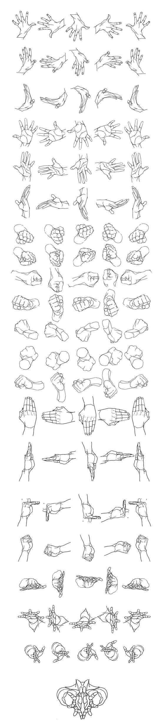 Character Anatomy Hands_2 (564x2460)