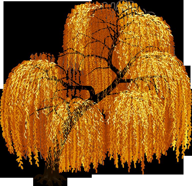 فيكتور شجر للتصميم سكرابز شجر اوراق شجر خريف للتصميم سكرابز اوراق الشجر في الخريف سكرابز اغصان Frame Border Design Border Design Design