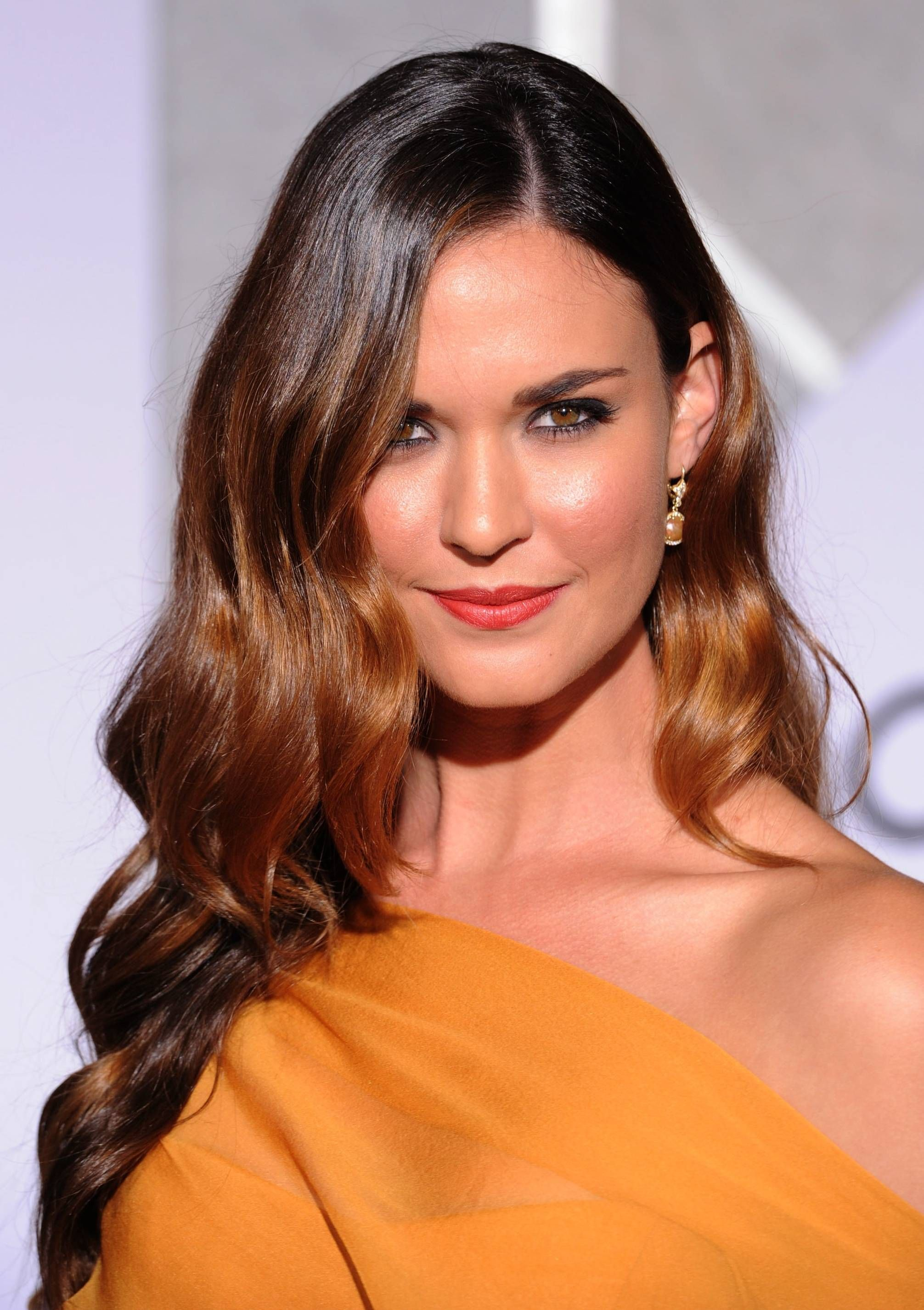 Gorgeous Hair Colors for Brunettes | Chestnut brown hair, Hair ...