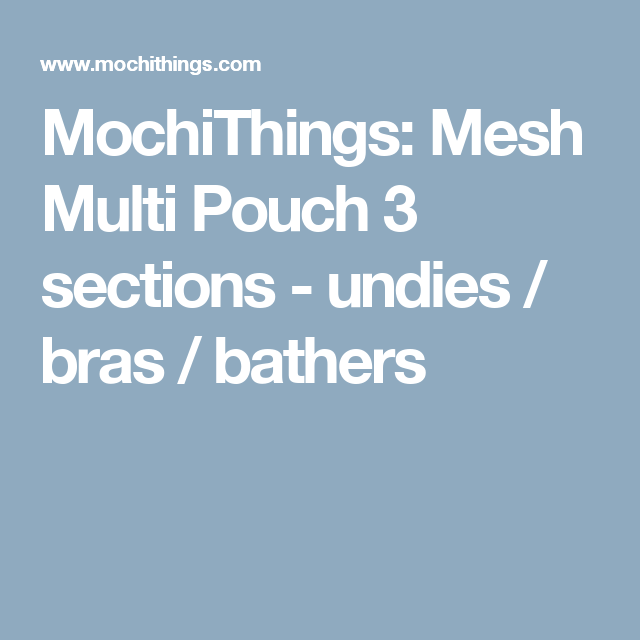 MochiThings: Mesh Multi Pouch 3 sections - undies / bras  / bathers