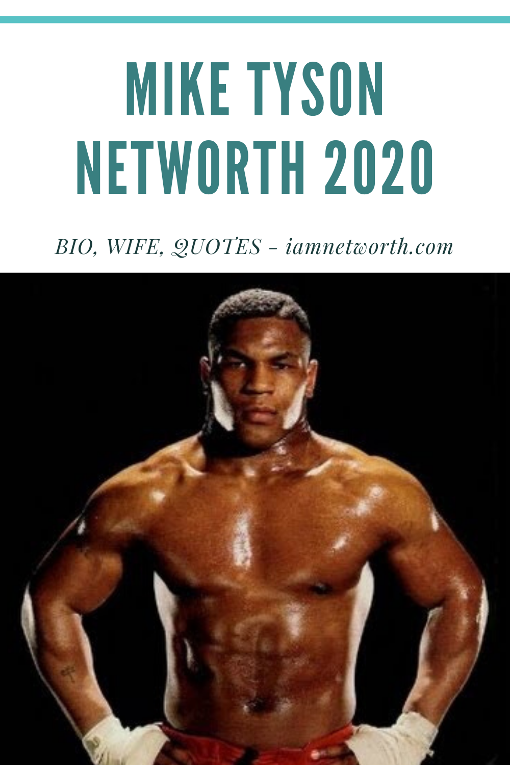 Mike Tyson Net Worth 2020 Bio Wife Quotes In 2020 Mike Tyson Net Worth Tyson