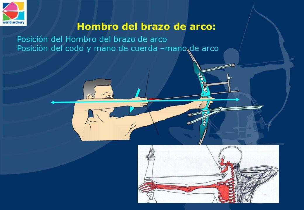 Fantástico Arco Recurvado Anatomía Ornamento - Imágenes de Anatomía ...