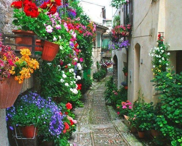 Flores En Los Balcones Flores Online Enchanted Places - Fotos-de-balcones-con-flores