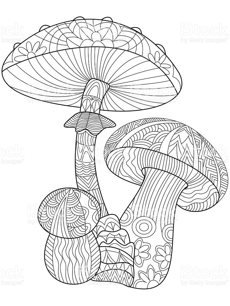 Mushroom Coloring Book For Adults Vector Illustration Anti Stress Fairy Coloring Pages Mandala Coloring Pages Coloring Pages