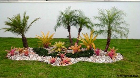 Jardines Modernos Con Palmas Buscar Con Google Palm Trees Landscaping Front Yard Landscaping Rock Garden Landscaping