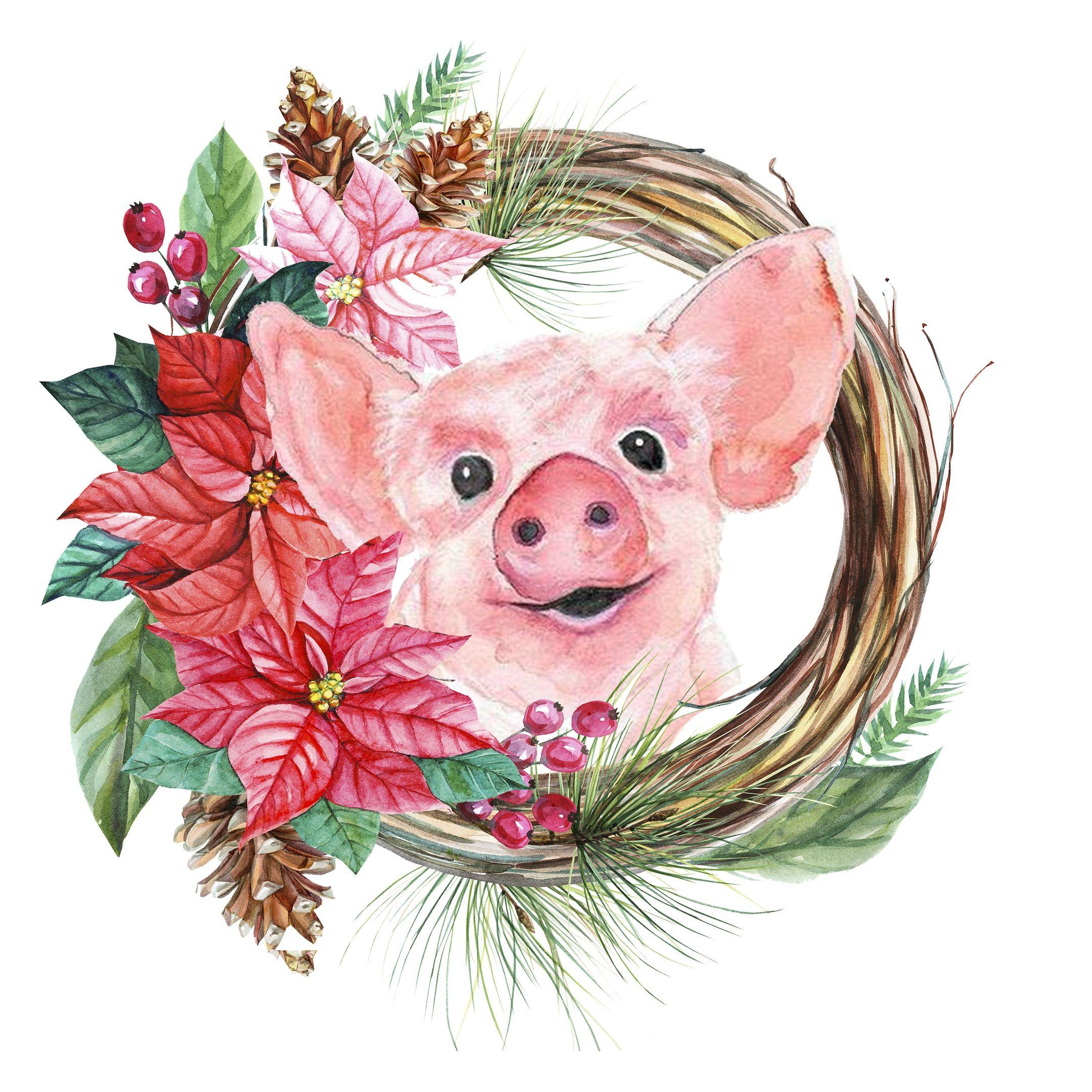 Днем, свинки на открытках