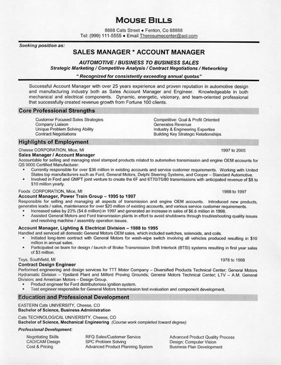 Functional Resume Template Sales -    wwwresumecareerinfo - resume format for sales manager