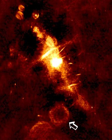 Astronomers Detect Powerful Bursting Radio Source: Discovery Points to New Class of Astronomical Objects