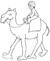Resultado De Imagen De Dibujos Para Colorear El Desierto Camello Y Dromedario Paginas Para Colorear De Animales Paginas Para Colorear Para Ninos