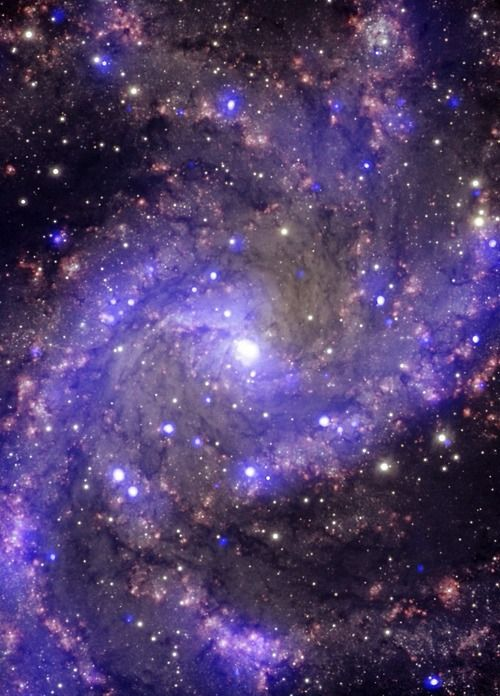 thedemon-hauntedworld: NGC 6946 The Fireworks Galaxy NGC 6946...