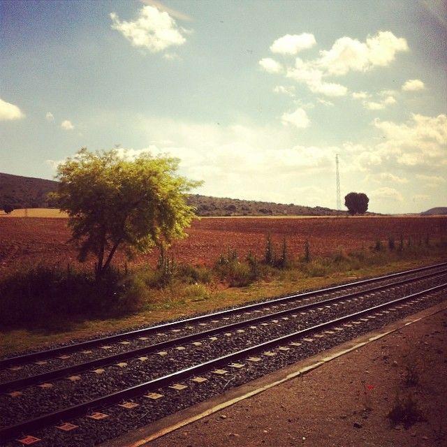 Viajar en tren debería aconsejarse bajo receta médica