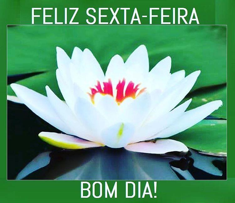 Bomdiaaa Bomdia Feliz Sextafeira Luz Paz Amor Coracao