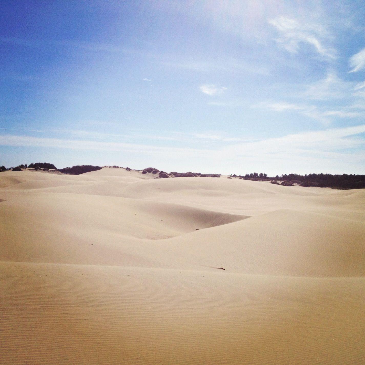 Oregon Sand Dunes.