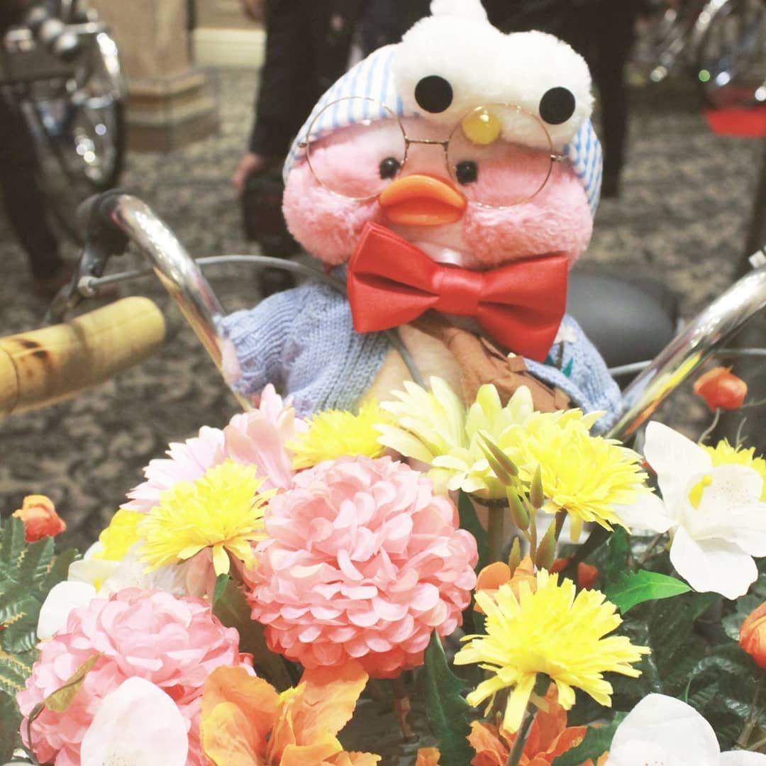 Lalafanfan duck