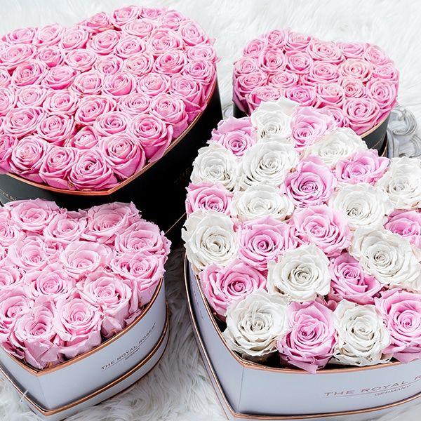 The Royal Roses Rosenbox Flowers Rosen Box Rosen Und
