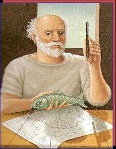 Anaximandro De Mileto 610 A C 546 A C Fue Un Filosofo