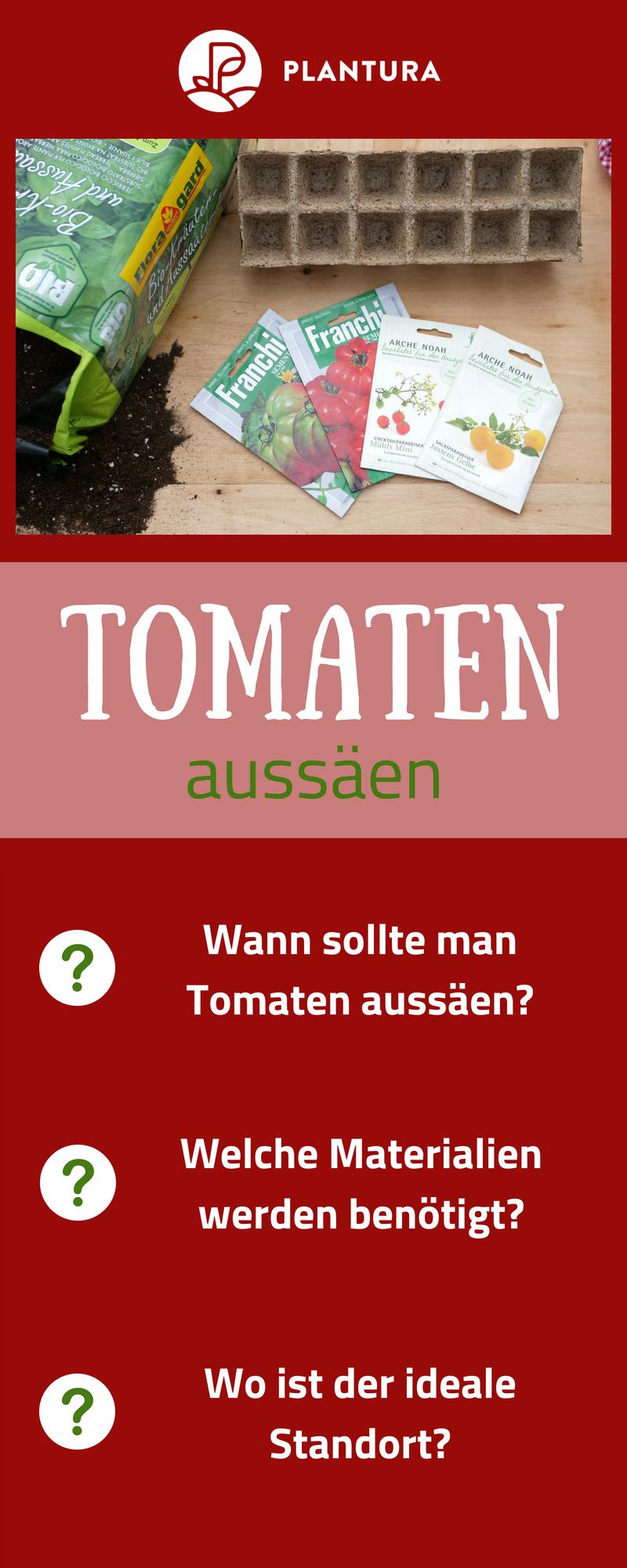 Tomaten aussäen, pikieren & auspflanzen: Anleitung mit Video #tomatenpflanzen
