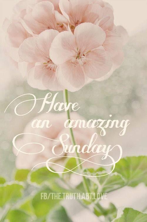 Happy Sunday! Enjoy your day of rest. Sunday wishes