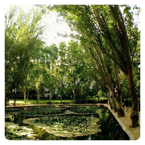 KOLESNY REALTY Turo Parc