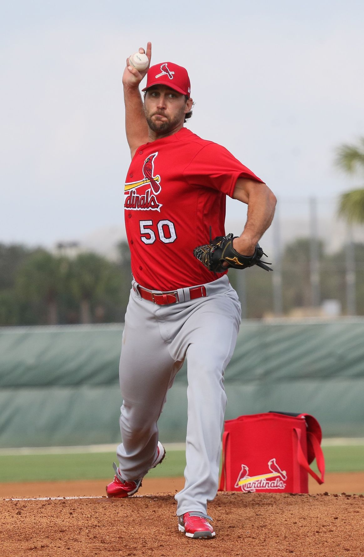 Photo of Photos from Cardinals Spring Training on Sunday, Feb. 19