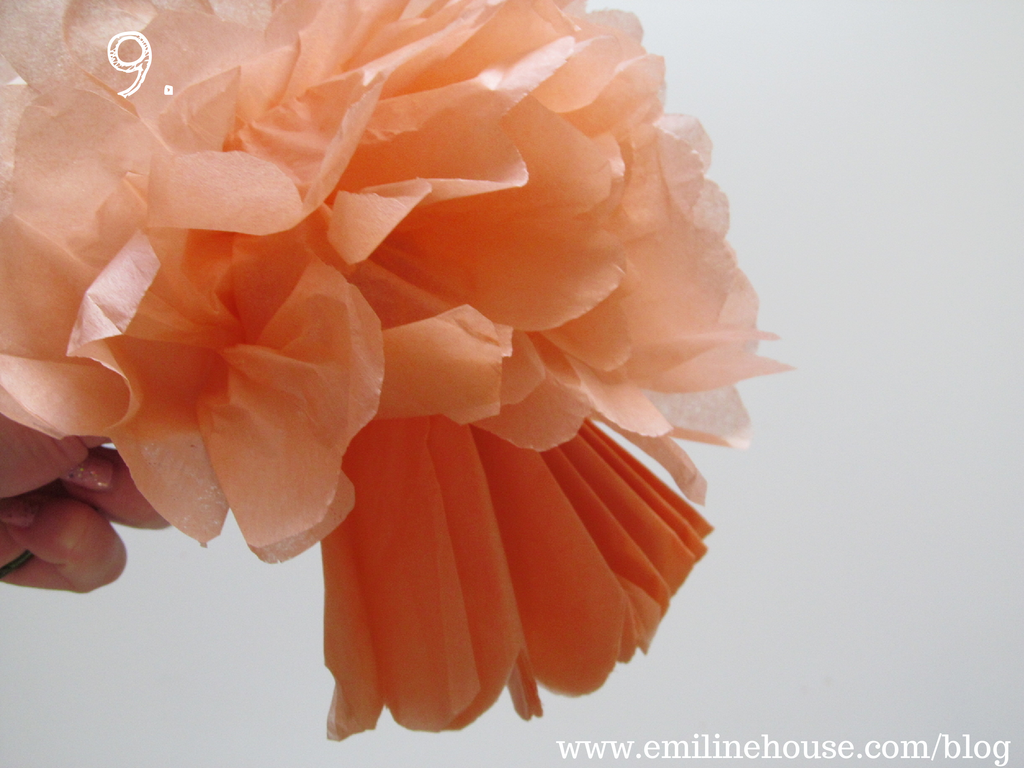 Diy tissue paper flowers emiline house emilinehouse find diy tissue paper flowers emiline house emilinehouse find us on facebook mightylinksfo