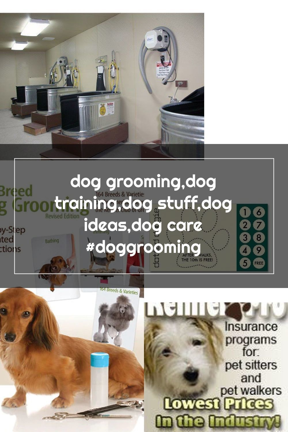 Pin Na Doshci Dog Grooming Business