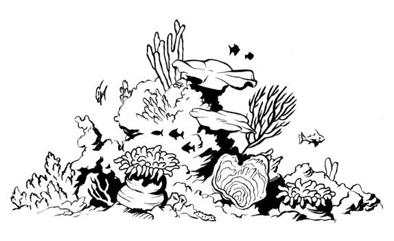 Great Barrier Reef Coloring Pages Coral Reef Drawing Sea Turtle