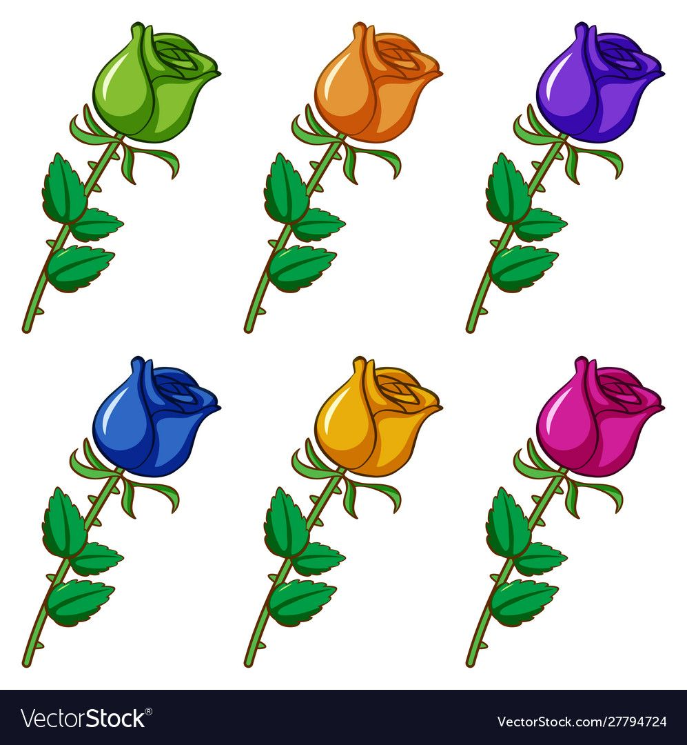 Isolated Set Flower In Different Colors Royalty Free Vector Ad Flower Set Isolated Colors Ad Color Vector Vector Flowers Butterflies Vector