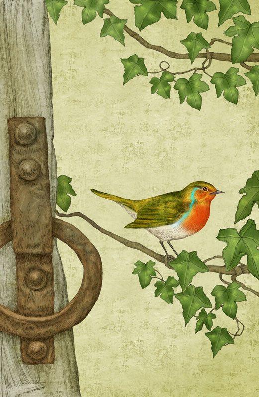 The Secret Garden   Robin   Folio Illustration Agency, London, UK | Julian  De