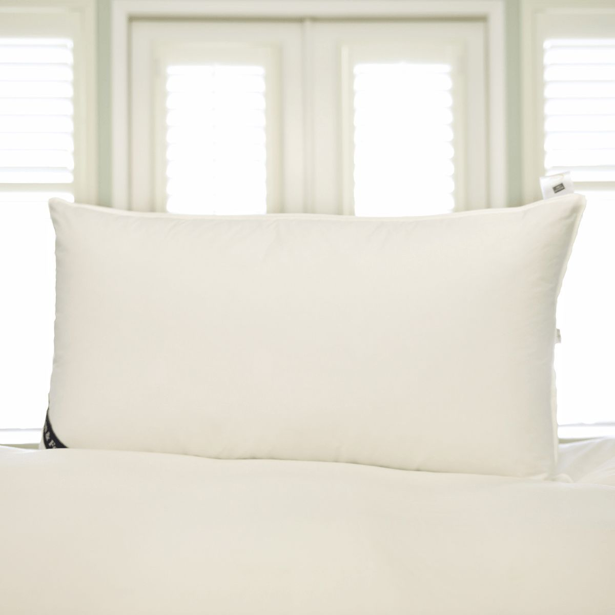 snuggle soft 800 fill power goose down pillows king 20 x 36