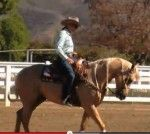 Video:  Improve Your Reining Spin - Tanya Jenkins Demonstrates An Exercise
