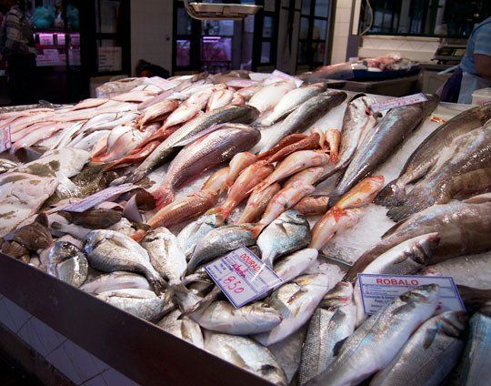 Seafood Galore A Market Tour In Lisbon Portugal Sustainable Fishing New Recipes Fish
