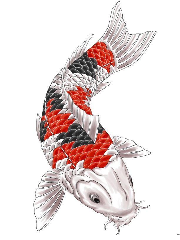 Karpa Koi Subindo Cores Arte Da Tatuagem Japonesa Koi