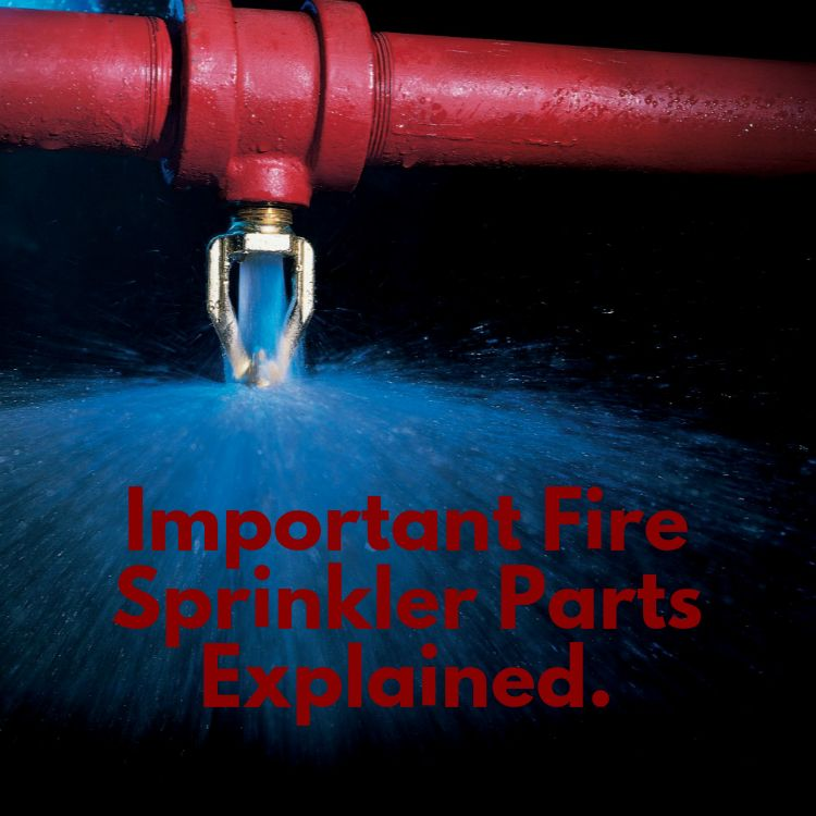 important fire sprinkler system parts explained sprinkler fire  important fire sprinkler system parts explained