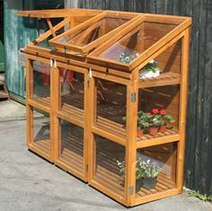 Exceptional Mini Greenhouse. I Want One.